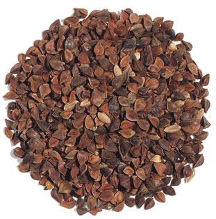 buckwheat_seeds