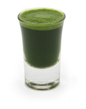 Wheatgrass Shot Glass