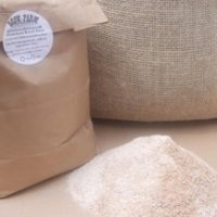 Lancashire grown and stone ground milling wheat to produce a whole wheat bread and baking flour