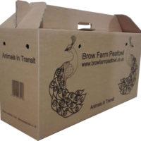 peafowl-transport-box[1]