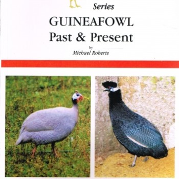 guinea_fowl_past_and_present_-_michael_roberts