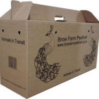 peafowl-transport-box[1]