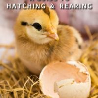 incubation_a_guide_to_hatching_and_rearing_by_katie_thear_2015_edition